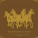 Deluxe Companion (Live)